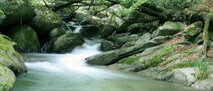 cropped-cropped-gijie_riverfishing-1-1.jpg