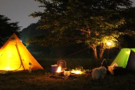 いきなりキャンプ生活