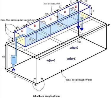 skema filter gantung untuk aquarium karantina koi