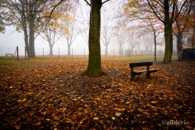 Autumn Fantasy : Deux Bancs dans la brume (Photo : Gilderic)