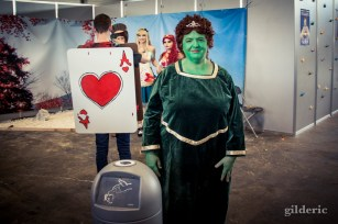 FACTS 2014 Cosplay : Fiona (without Shrek)
