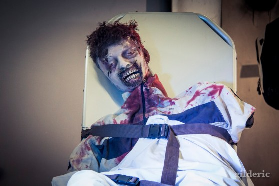 FACTS 2014 - Walking Dead prop zombie - photo : Gilderic