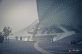 La gare de Liège-Guillemins dans le brouillard