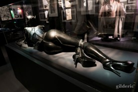 Costume de Catwoman
