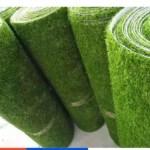 """DIY Kebun Mini Guna """"Rumput Karpet Viral"""""""