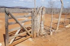 Random fence