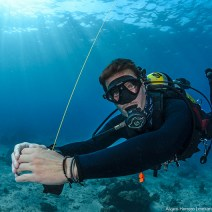 gili-divers-gallery-17