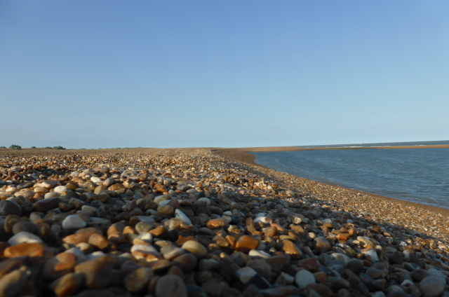 Shingle beach, Suffolk