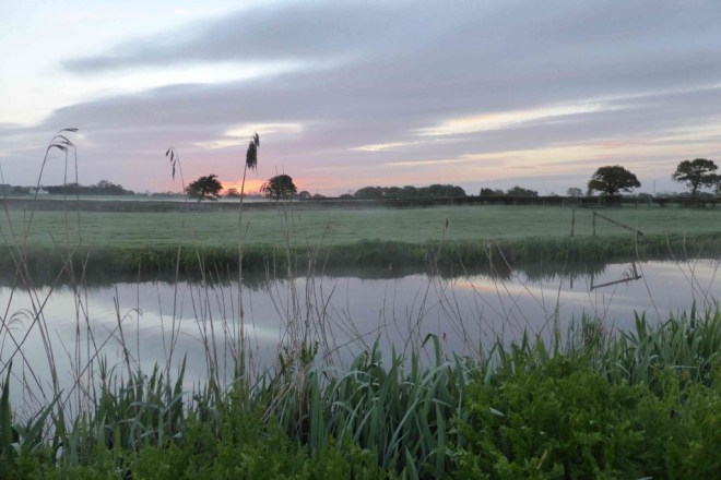Sunrise, one hour after the dawn chorus begins