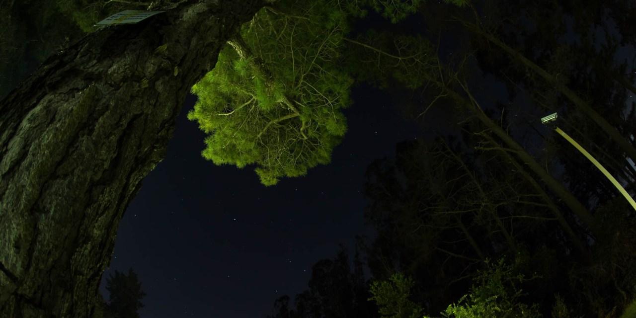 Meteor Hunting @ Chamanade