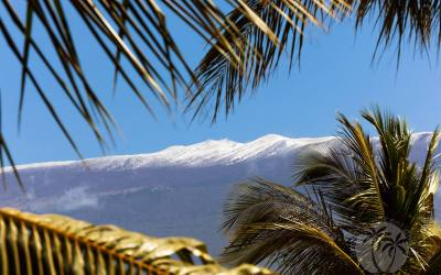 Snow Has Fallen in a Hawaii at Perhaps the Lowest Elevation in History!