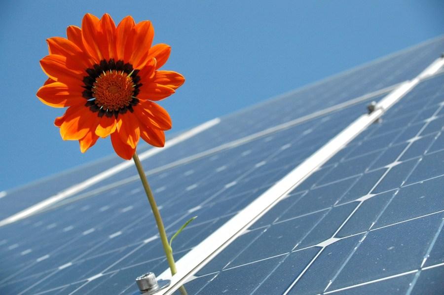 Les escroqueries au photovoltaïque se multiplient