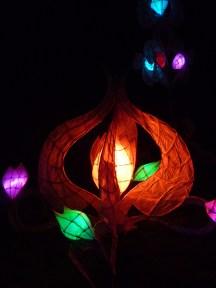 Lantern Flowers2