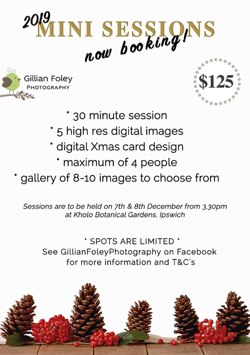 mini sessions are here again!