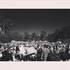 The Hardly Strictly Bluegrass Crowd during Gillian's set, October 3, 2015.