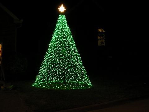 2008 Mega Tree
