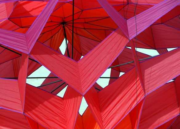 Red kite abstract