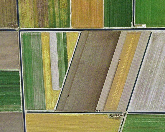 Dutch Tulip Fields, 2012, Mishka Henner