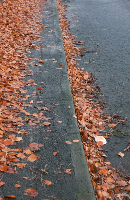 Autumn leaves in gutter