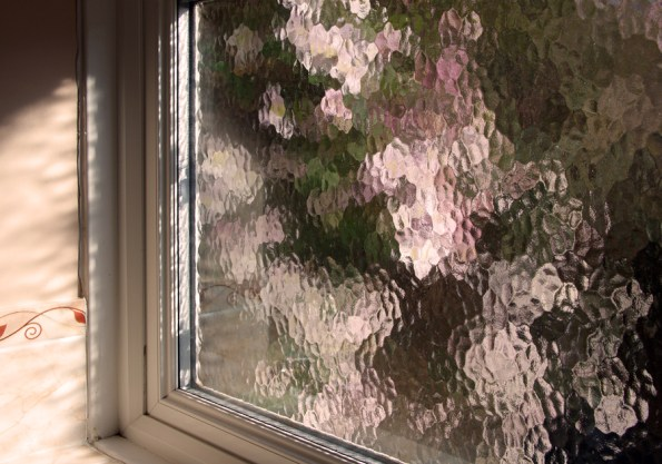 Blossom through bathroom window