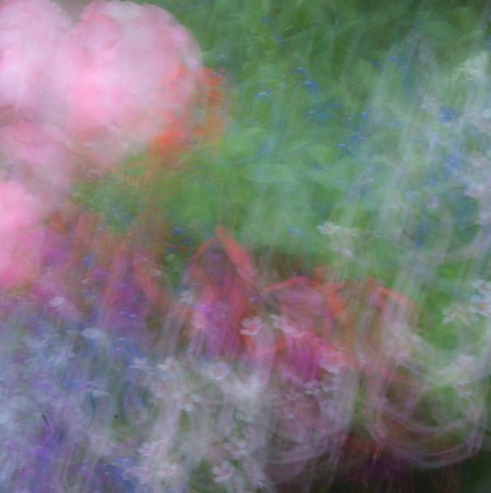 Summer colours, intentional camera movement