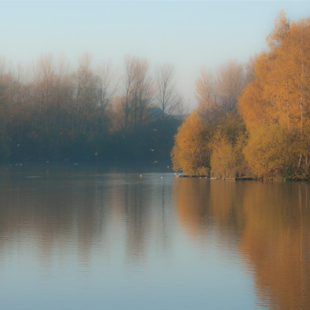 Autumn Lake, Balderton Lakes, Newark, square crop