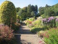 Border in the formal garden at Craigside, Northumbria, alive with pollinators in late September