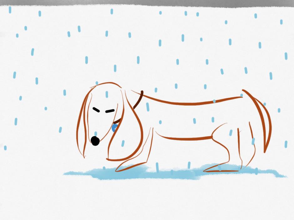 it's raining again mr. sims