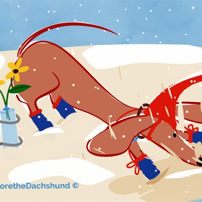 it's snowing on the beach? i'm trying to dig a big enough hole to visit some friends that promised me better weather!