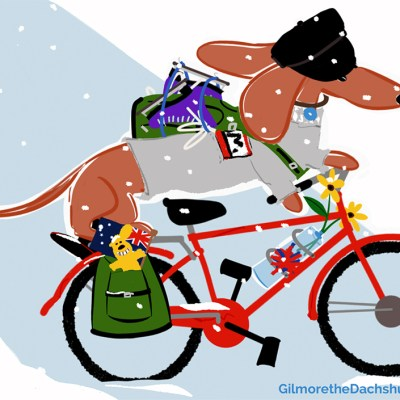 i have a flat tire and some dings in the nice red paint of the bicycle i borrowed! so i'm here for a visit with my #teckel friend. he said they are really good with bicycles in the #netherlands and mum drew some really cool purple skates for me. hee hee. i'm nice and warm in rogers sweater too. it says MOM