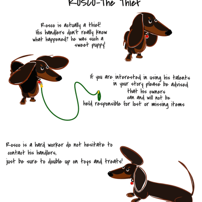 "meet rosco. he isn't very long but he is brilliant in his part as the thief in ""The Longest Dachshund "" pawtographs are available upon request . . YOU CAN FOLLOW THE WHOLE STORY IN THE #thelongestdachshund"