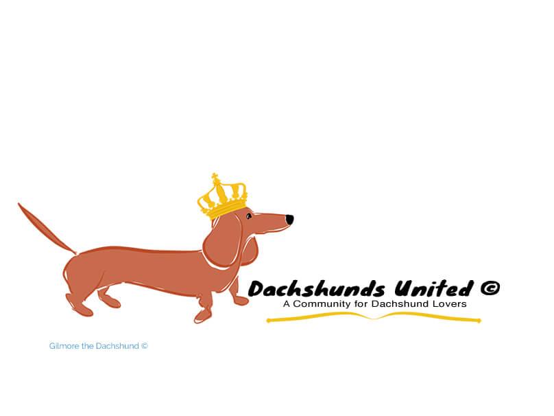 Dachshund United ©