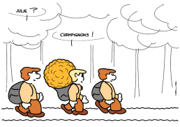 4704_champignons_100