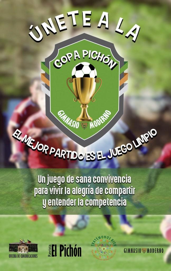 COPA PICHON web
