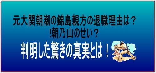 元大関朝潮の錦島親方の退職理由は?!朝乃山のせい?真実に驚き!