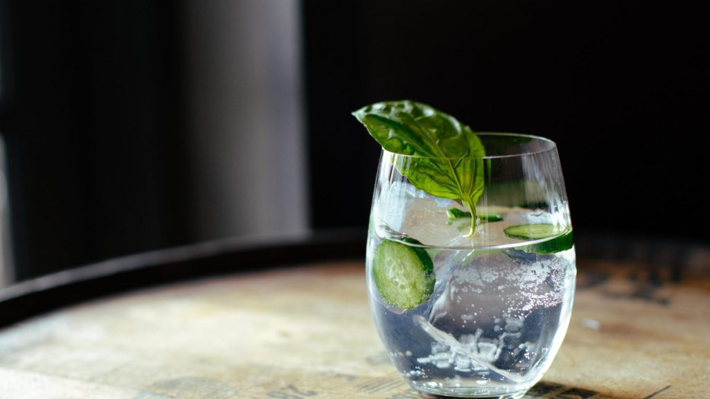 Gin and tonic in a glass with garnish
