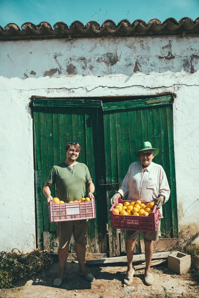 Collecting native oranges for Gin Eva