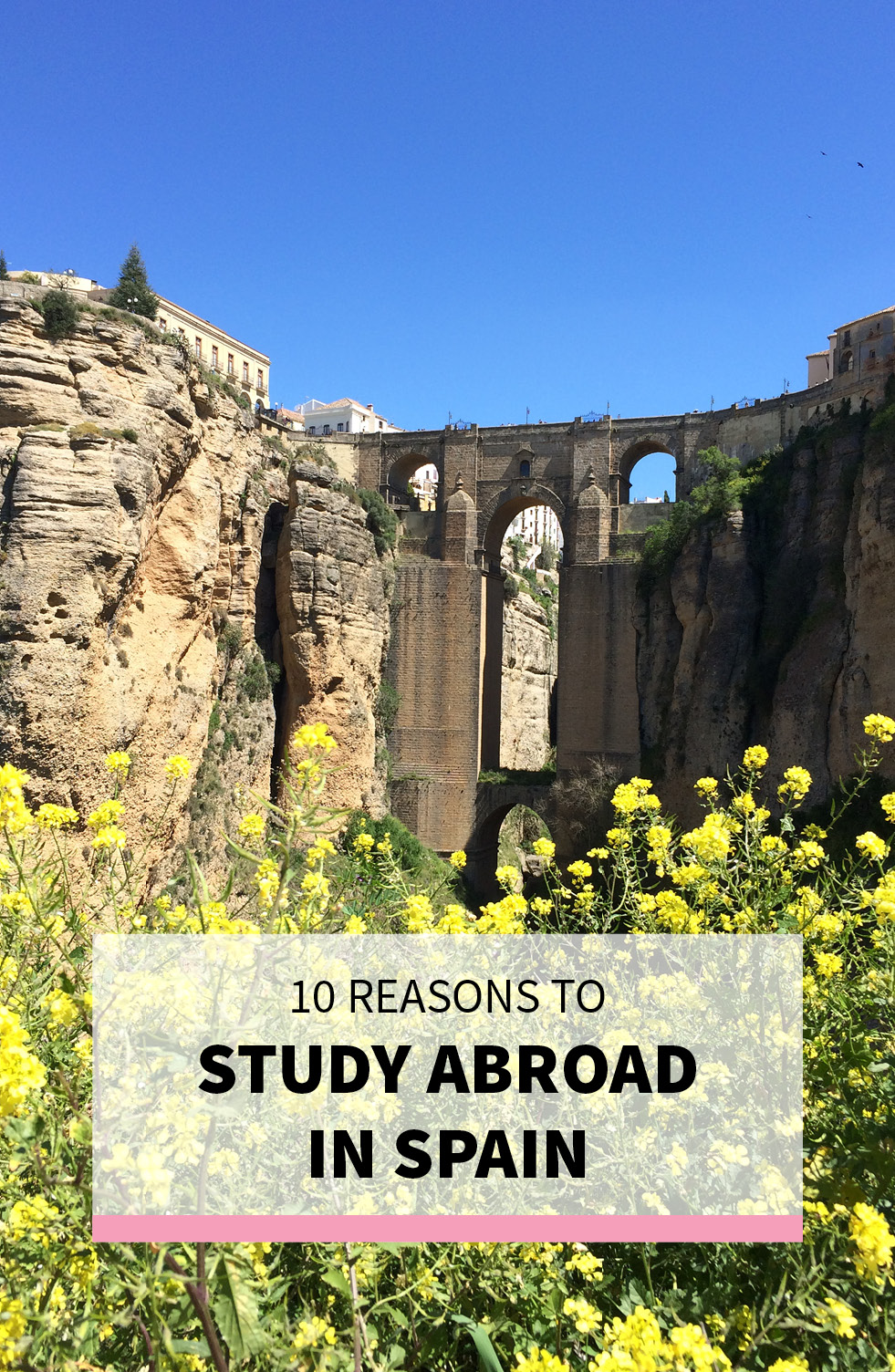 Why You Should Study Abroad in Spain