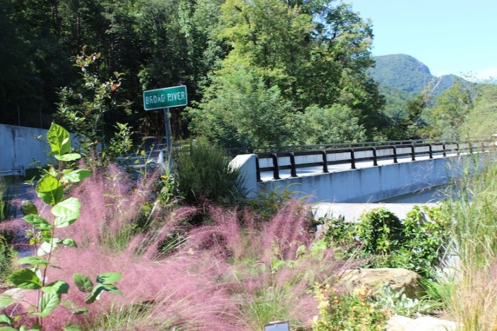 Broad River Lake Lure Flowering Bridge