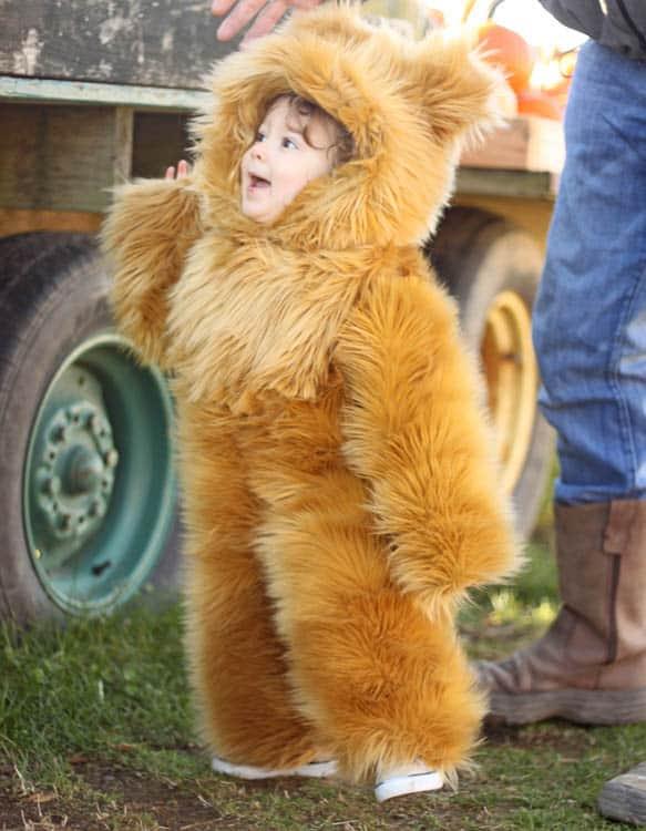 Handmade toddler teddy Bear halloween Costume