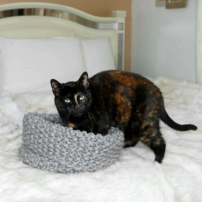 Easy Cat Bed Knitting Pattern - Gina Michele