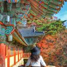 Romantic Autumn Date Spots in Korea