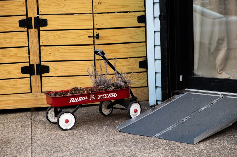 dried plants in a red wagon