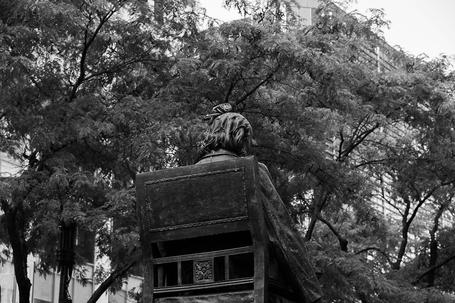 a pigeon sits on the head of a statue in NYC