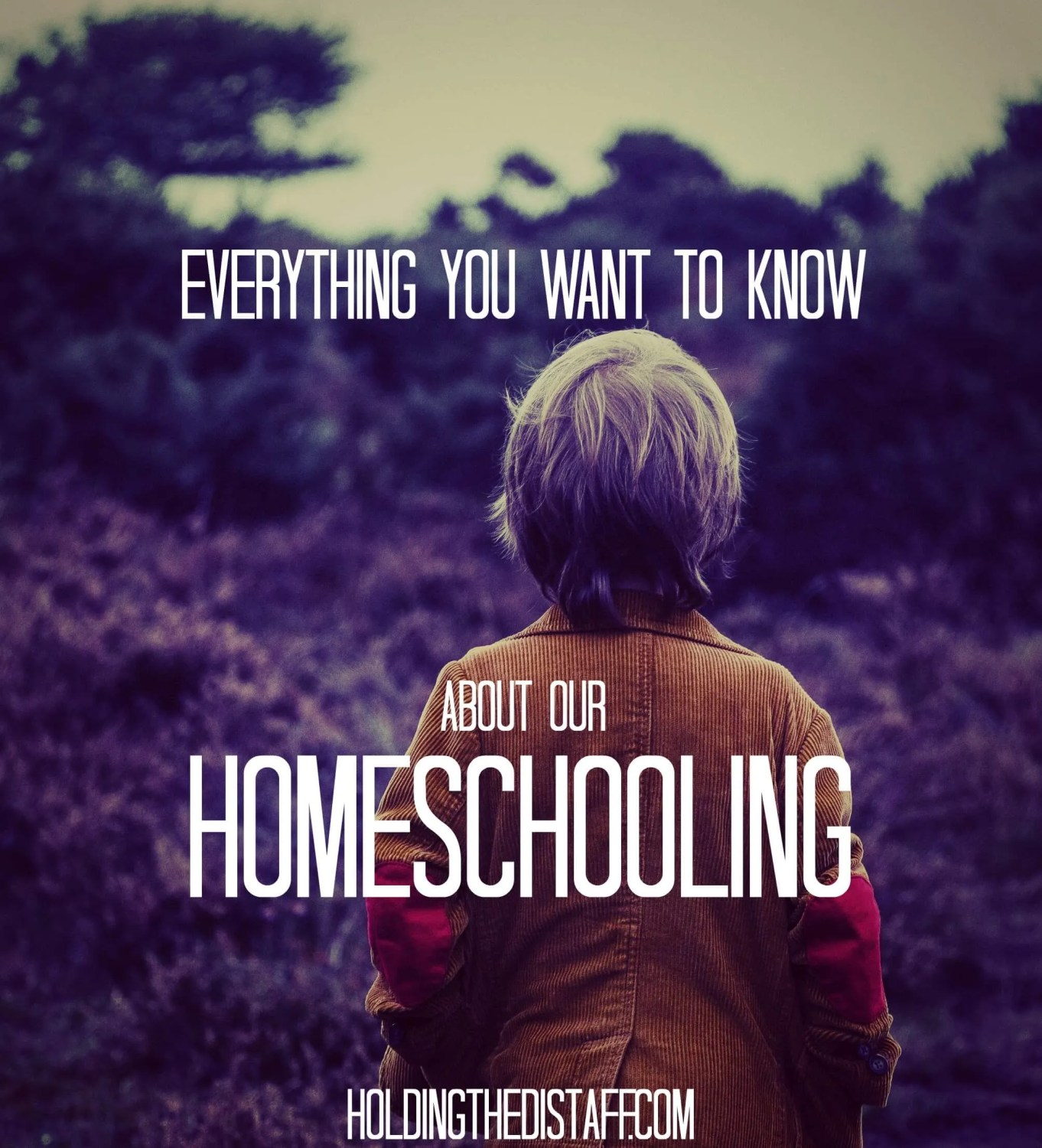 Everything you want to know about our homeschooling: common questions we get about how and why we homeschool.