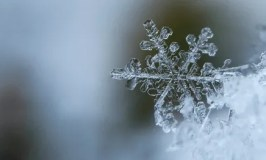 50+ Easy, Frugal & Fun Winter Activities for the Whole Family