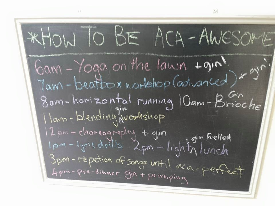 Aca-bootcamp before the festival