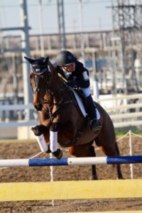 ? Hydrating the Equestrian ? 2