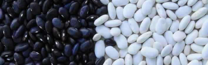 feijão branco e feijão preto magnésio