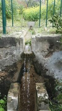 תעלת מים בבוסתן כיאט